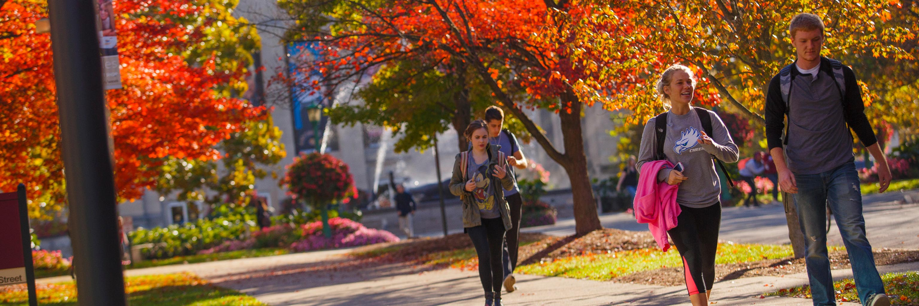 People walking down a campus sidewalk in the fall